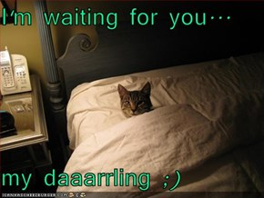 I'm waiting for you...   my daaarrling ;)