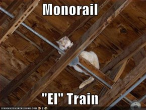 "Monorail  ""El"" Train"
