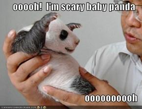 ooooh!  I'm scary baby panda  oooooooooh
