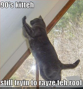 90's kitteh  still tryin to rayze teh roof
