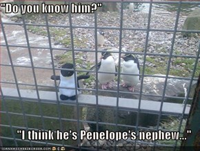 """Do you know him?""  ""I think he's Penelope's nephew..."""