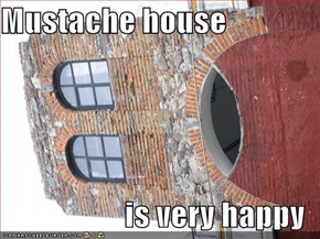 Mustache house  is very happy