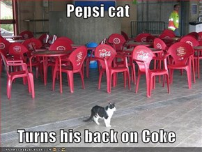 Pepsi cat  Turns his back on Coke