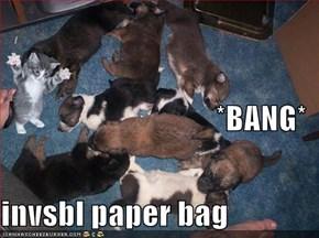 *BANG* invsbl paper bag