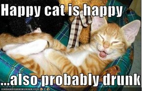 Happy cat is happy  ...also probably drunk