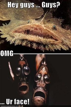Hey guys ... Guys? OMG ... Ur face!