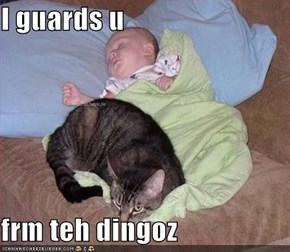 I guards u  frm teh dingoz
