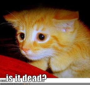 ...is it dead?
