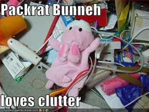 Packrat Bunneh  loves clutter