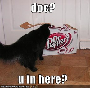 doc?  u in here?
