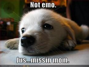 Not emo.  Jus...missin mom.