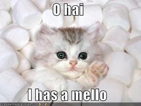 O hai  I has a mello
