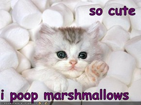 so cute  i poop marshmallows