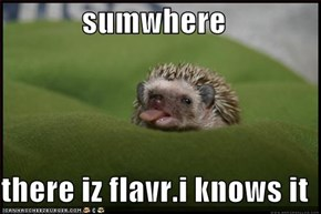 sumwhere  there iz flavr.i knows it