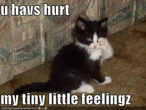 u havs hurt   my tiny little feelingz