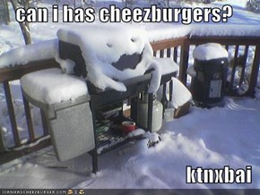 can i has cheezburgers?  ktnxbai