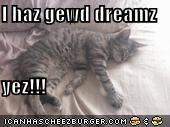 I haz gewd dreamz  yez!!!