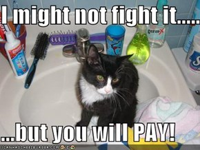 I might not fight it.....   ...but you will PAY!