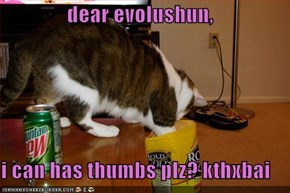 dear evolushun,  i can has thumbs plz? kthxbai