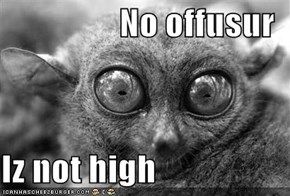 No offusur  Iz not high