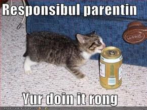 Responsibul parentin  Yur doin it rong