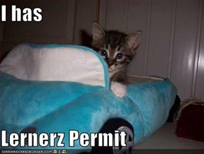 I has  Lernerz Permit