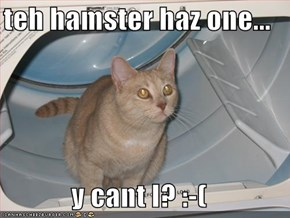 teh hamster haz one...  y cant I? :-(