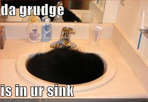 da grudge  is in ur sink