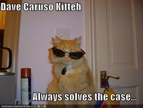 Dave Caruso Kitteh  Always solves the case...