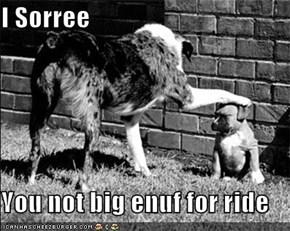 I Sorree  You not big enuf for ride
