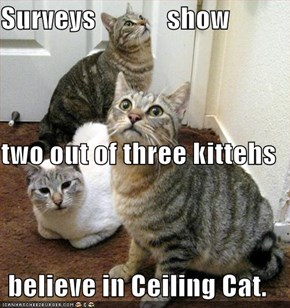 Surveys             show two out of three kittehs believe in Ceiling Cat.