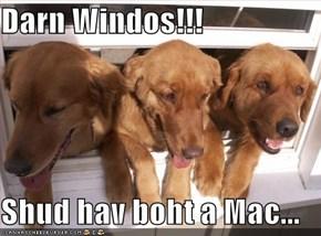 Darn Windos!!!  Shud hav boht a Mac...