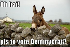 Oh hai!  pls to vote Demmycrat?