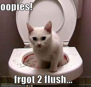 oopies!  frgot 2 flush...