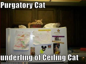 Purgatory Cat  underling of Ceiling Cat