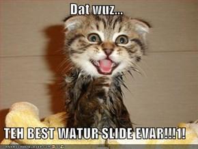 Dat wuz...  TEH BEST WATUR SLIDE EVAR!!!1!