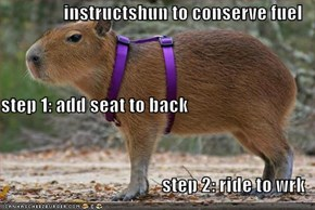 instructshun to conserve fuel step 1: add seat to back step 2: ride to wrk