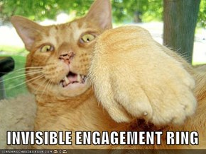 INVISIBLE ENGAGEMENT RING