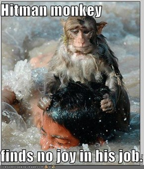 Hitman monkey  finds no joy in his job.