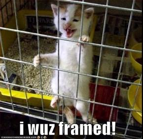 i wuz framed!