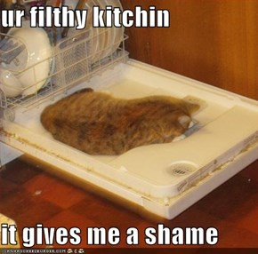 ur filthy kitchin  it gives me a shame