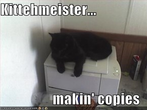Kittehmeister...  makin' copies