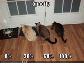 opacity      0%           30%         60%     100%