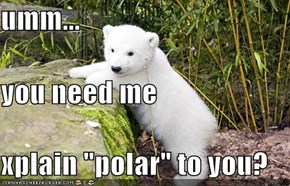 "umm... you need me xplain ""polar"" to you?"
