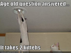 Age old question answered...  It takes 2 kittehs