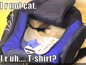I r not cat.  I r uh.... T-shirt?