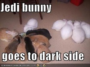 Jedi bunny  goes to dark side