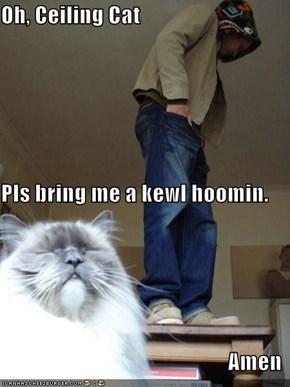 Oh, Ceiling Cat Pls bring me a kewl hoomin. Amen