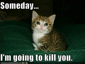 Someday...  I'm going to kill you.