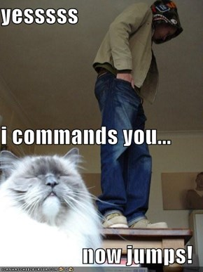 yesssss i commands you... now jumps!